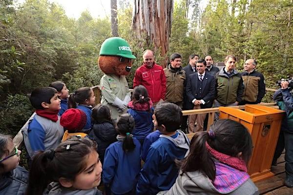 """Ministro de Agricultura en Día Internacional de los Parques Nacionales: """"Chile tiene uno de los mejores sistemas de parques del mundo"""""""