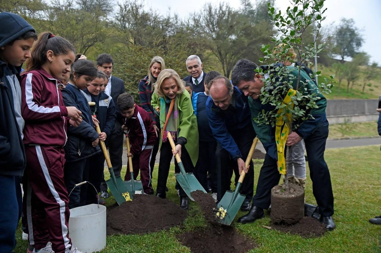 """Primera Dama celebró el Día Mundial del Árbol anunciando el reimpulso del plan """"Un chileno, un árbol"""""""