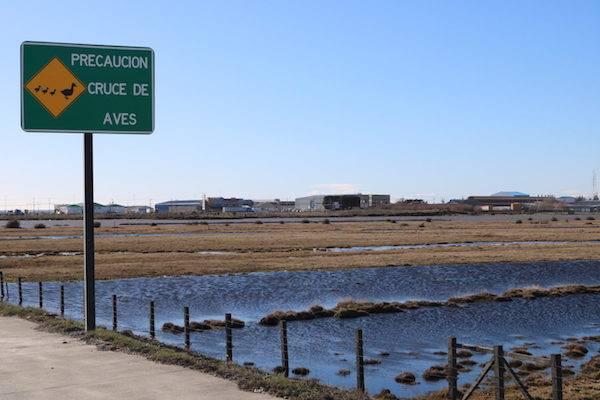 Proyecto de Humedales Urbanos queda a un paso de ser ley