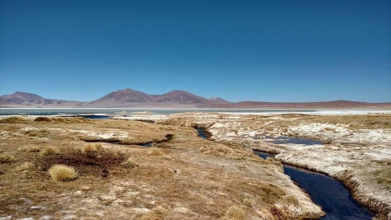 """Consejo de Ministros para la Sustentabilidad aprueba la propuesta de declaración del Parque Nacional """"Salar del Huasco"""""""